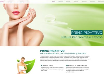 web agency novara principioattivosrl